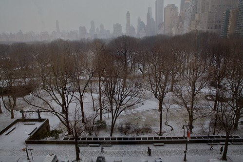 Central Park Snow   by jetrotz