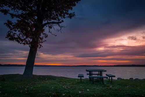 canoneos5dmarkiv ef24105mmf4lisusm lakecadillac mi michigan cadillac lago picnic picnictable tree amanecer sunrise upnorth