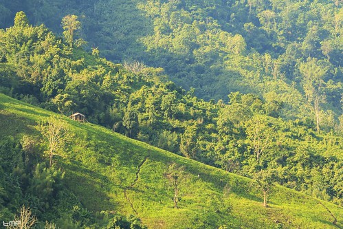 3140ft bandarban bangladesh bogalake chittagong hiking islandhopping kewkaradong landscape nhbd naturehuntbangladesh places roma sunset tmp trkmhd tracking traveling weather adventure adventurethatislife beautiful beauty cloud clouds green hill landscapelovers lovetotravel mothernature nature natureseekers naturelover naturelovers skylovers skypainters trees trip trk view wanderlus