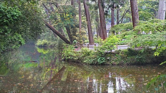 Le  parc du grand sanctuaire shintoïste d'Ise (Japon)