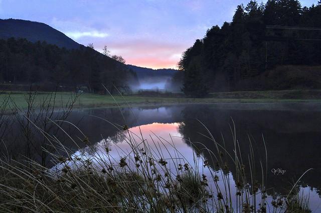 1 Brume hivernale près de Ranrupt (Bas-Rhin)