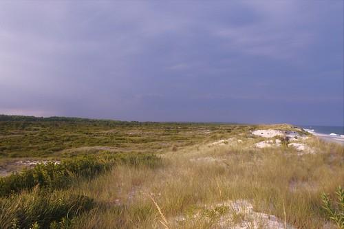 landscape nature natural grasslands beach atlantic sunset