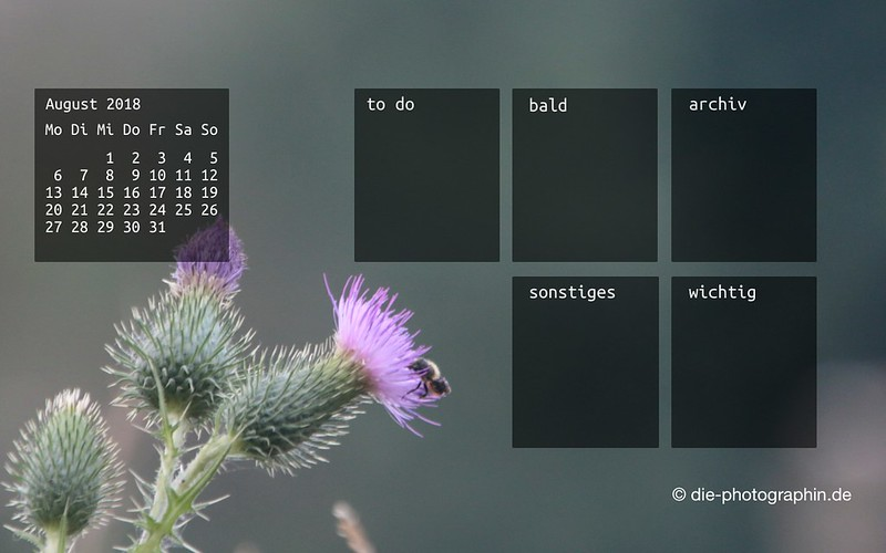 082018-distel-organizedDesktop-wallpaperliebe-diephotographin