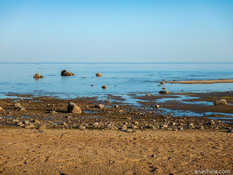 Балтийский берег, Зеленогорск