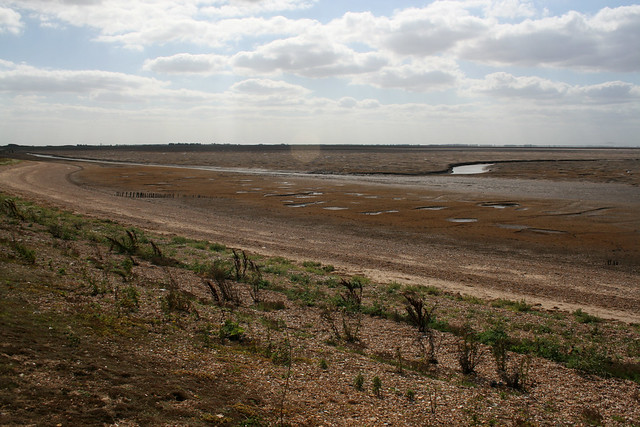 The coast at Snettisham