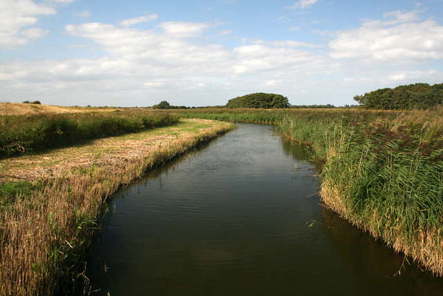 Marshes east of RSPB Snettisham