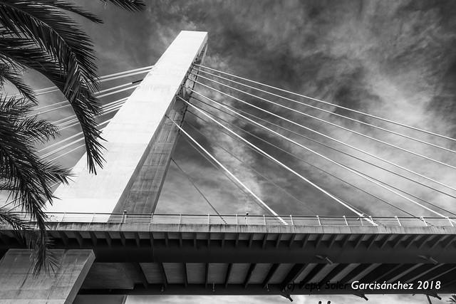 Pont de la Generalitat - Elche
