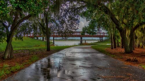 bendersonpark luminar macphun sarasota sonyalpha florida green reflections trees unitedstates us