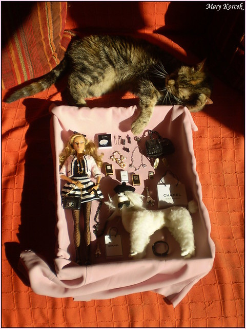 TAG GAME - dolls with real pets