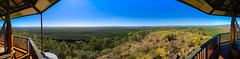 Coastal panorama from Wild Horse Mountain Lookout