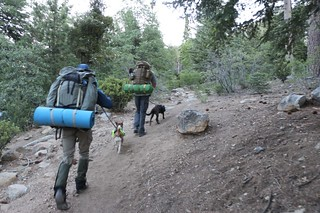 013 We get started up the San Bernardino Peak Trail just after dawn with dogs properly leashed | by _JFR_