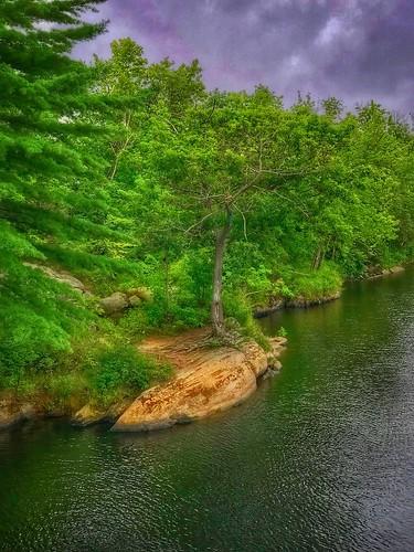 nature trees river swingingbridge brunswickme maine