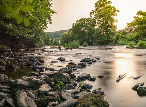 wales llangollen mountains birds prey owl eagle kestrel long exposure clwyd denbishire dee river nikon d800e train hey farmland countryside