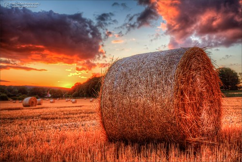 ian garfield photography landscape farm england shropshire tong field hay bale sunset sun cloud sky fields farming countryside country canon hdr high dynamic range blue skies summer straw