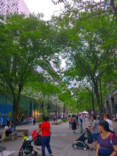 Street 2 - Normal (G7+, HDR)   by huleefox