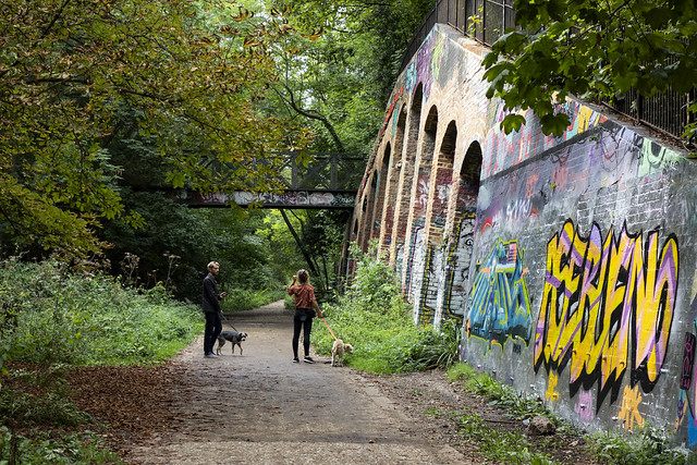 Dog Walking, Parkland Walk Near Crouch End