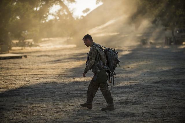 Combat Support Training Exercise