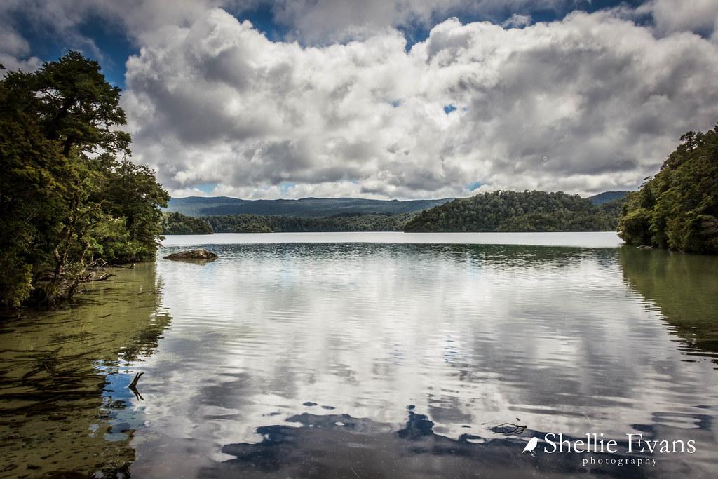 Lake Waikareiti Walk, Lake Waikaremoana, Northern Hawkes B