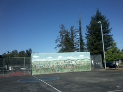 A visit to a park in Redwood City 2