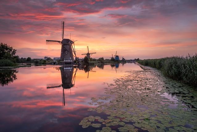 Kinderdijk sunset