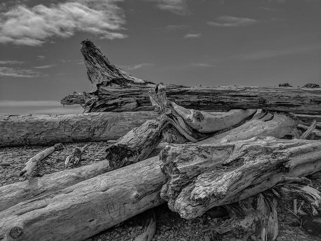 Quileute and Rialto Beach-25