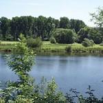 Teich in der Heisinger Ruhraue im Spätsommer