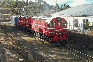Y4 arriving into Hobart on a DVR excursion in March 2003 - Andrew Dix | by Transport Museum