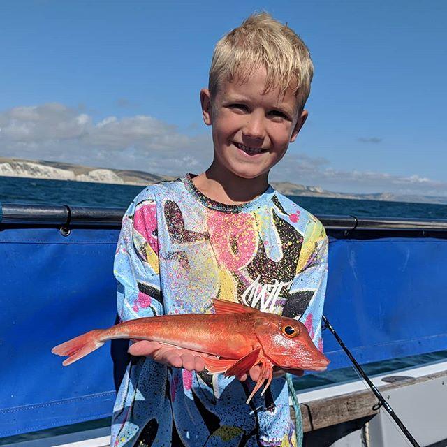 Plenty of gurnards about #amarisaweymouth #redgurnard #fishingtrip