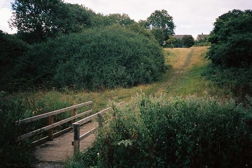 Footbridge   by knautia