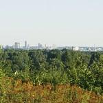 Vom Gipfel der Schurenbachhalde aus ist an Tagen mit guter Fernsicht unter anderem die Essener Skyline zu sehen
