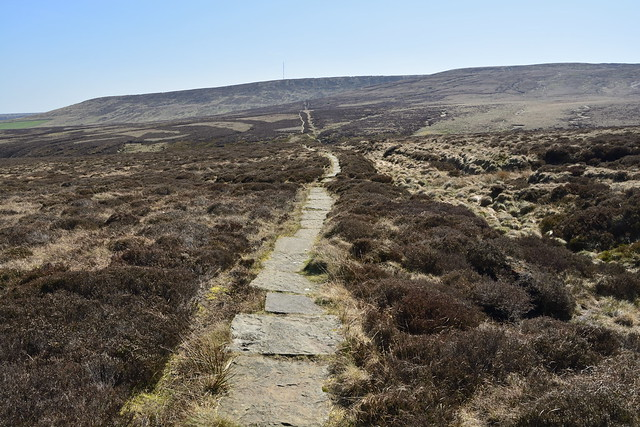 Black Hill to Wessenden Head (569)