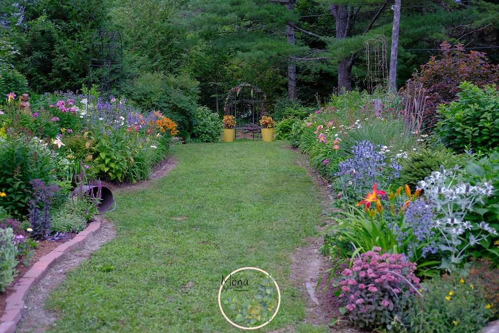pb-rocaille-nord_pb-lavande_alcove-deco-jardin-180729-web ...