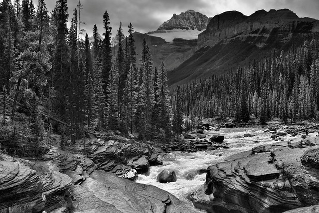 Mistaya River Flowing By and Through the Peak of the Canadian Rockies (Black & White, Banff National Park)