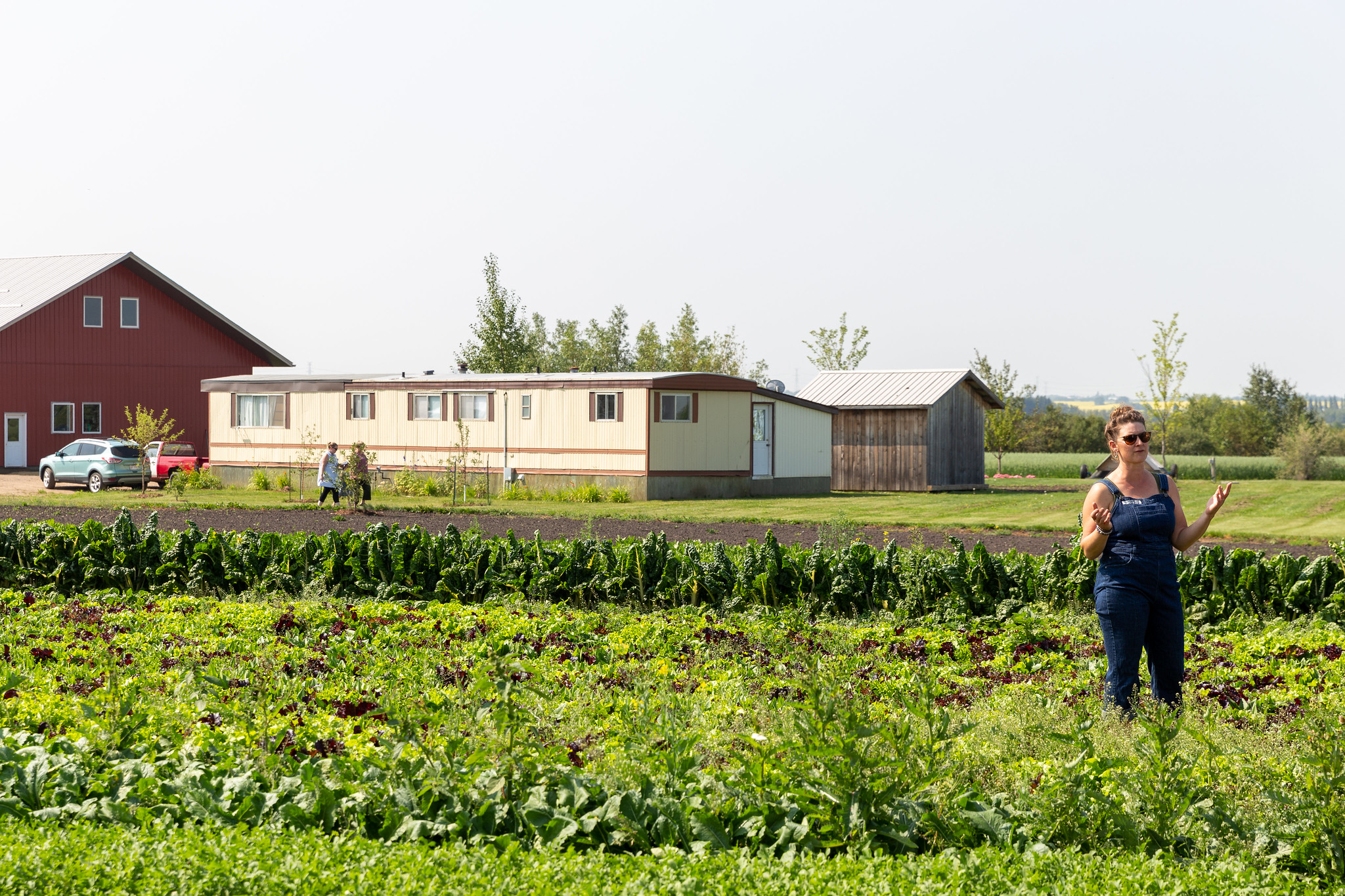 Jenny Berkenbosch of Sundog Organic Farm giving a tour of her farm in July 2018. Photo by Mack Male.