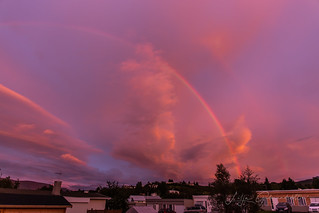 Regnboginn / the rainbow