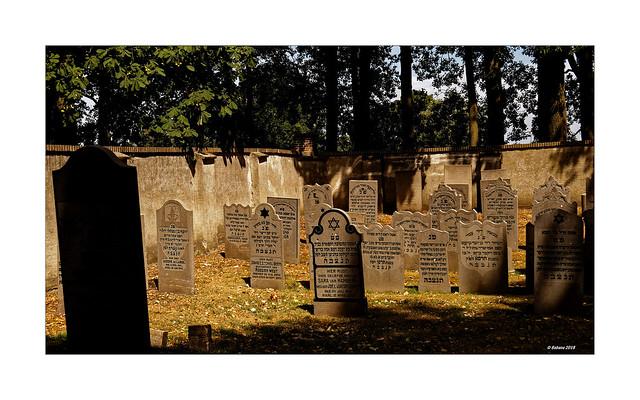 ELBURG (NL) - jüdischer Friedhof