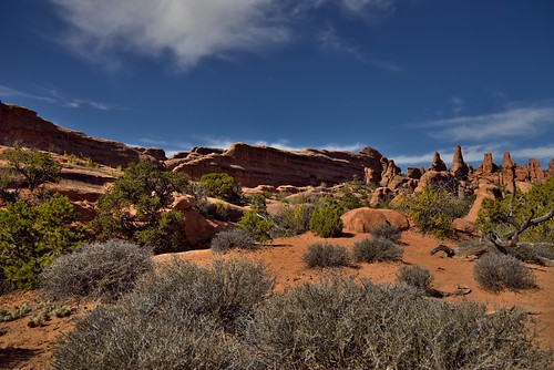 Across Utah! (Arches National Park) | by thor_mark 
