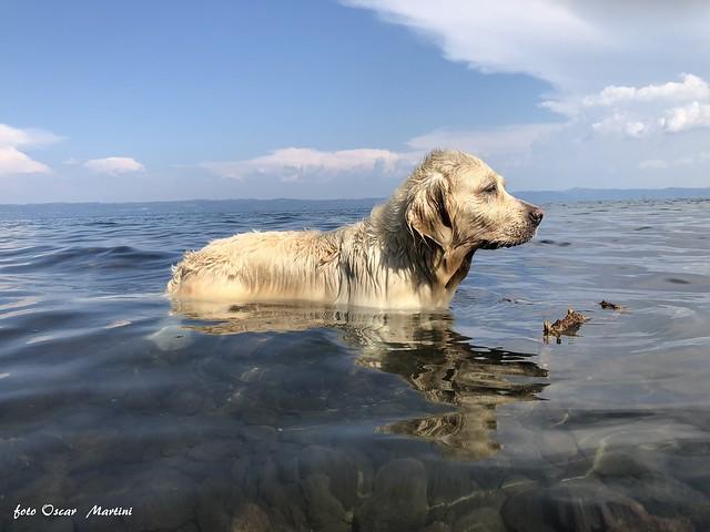 Dea sul lago di Bolsena