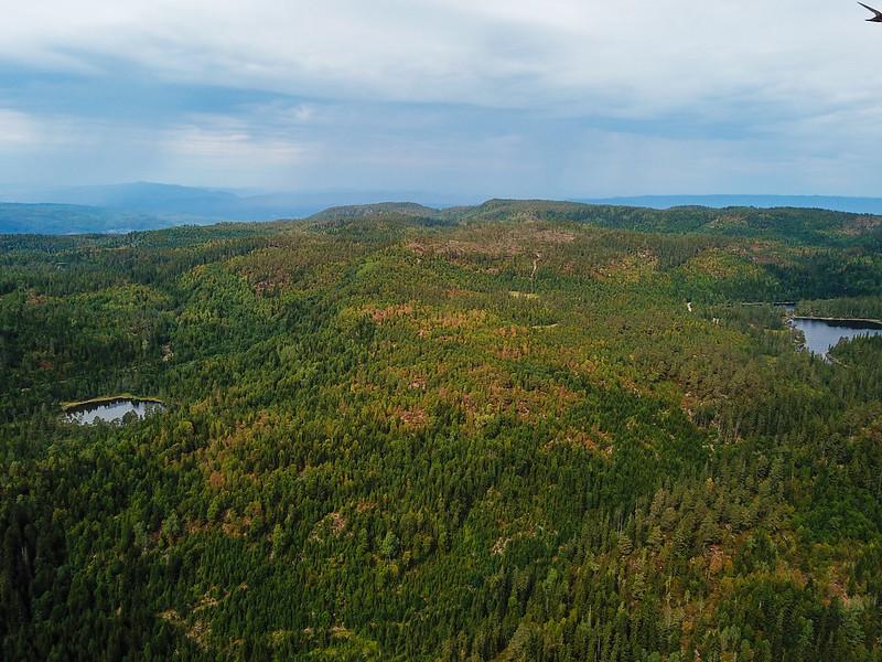 38-Utsikt mot Kutjern og Fisketretjerna fra Langetjern (drone)