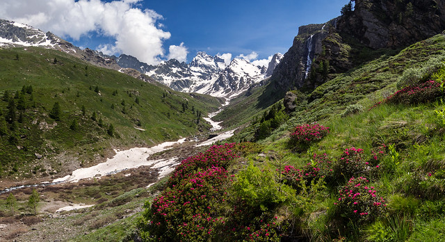 Spring in the Guil Valley