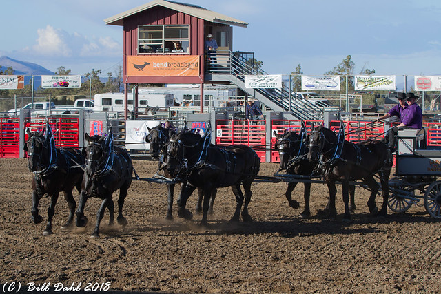 Deschutes County Fair and Rodeo August 2018