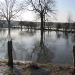 Winter in der Walsumer Rheinaue