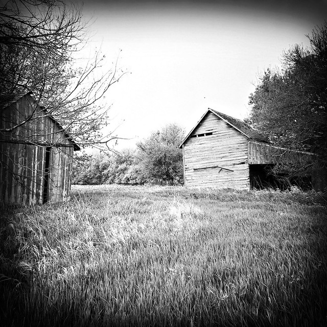 Black And White Barns