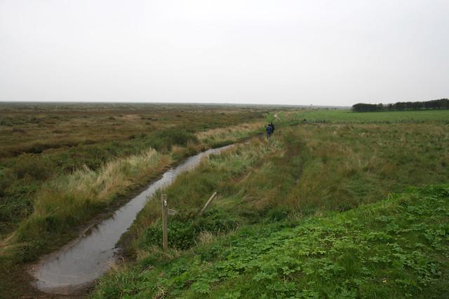Salt marsh near Blakeney