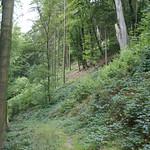 Schmaler Wanderweg im Naturschutzgebiet Oefter Tal