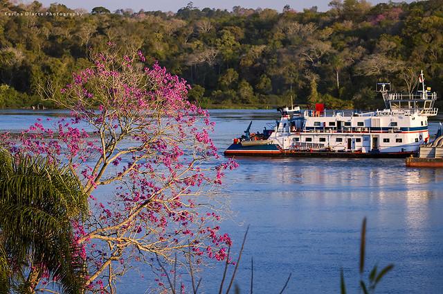 barcaza - Río Paraná