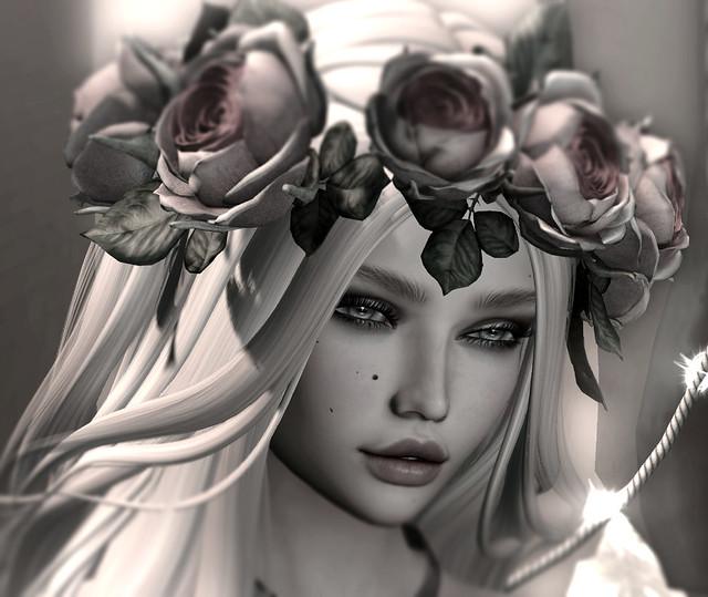 Entre luciérnagas y rosas