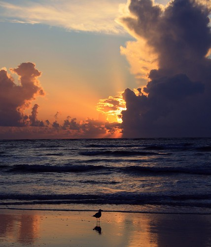 artisticsunrisephotography sunrise florida summer northernflorida 7518 unitedstates usa saintaugustineflorida villanobeach 2018 beach sea sand water atlanticocean waves ocean jetty sky cloudscape fun