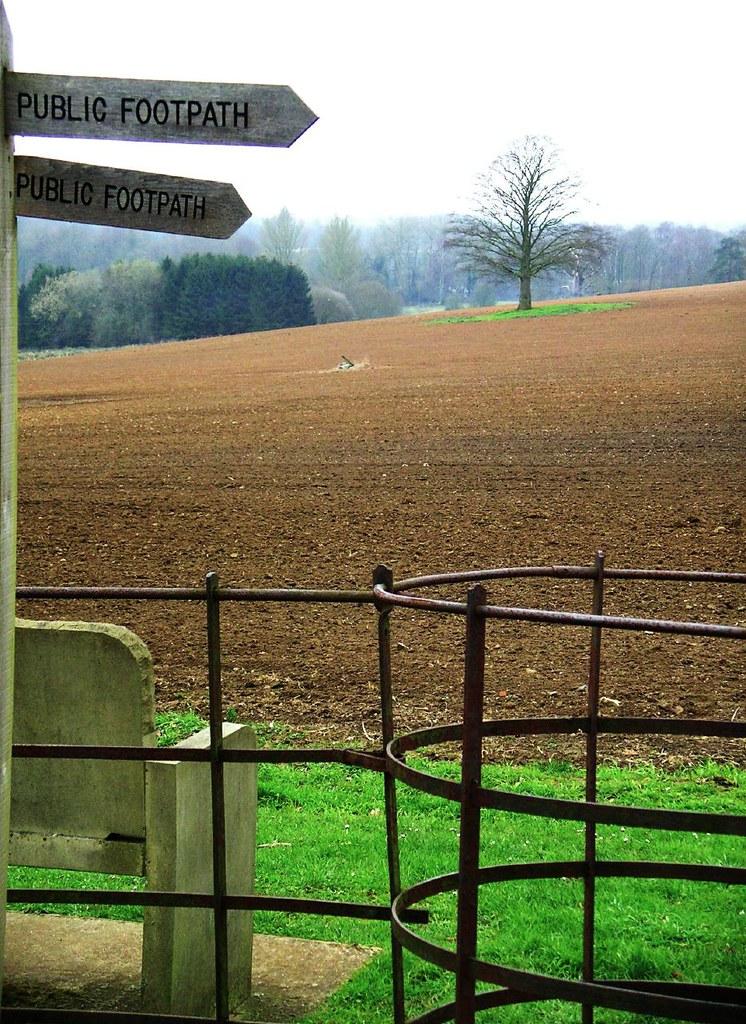 Book 1, Walk 12, Farnham to Godalming 5 Peper Harow, 24 March '07.