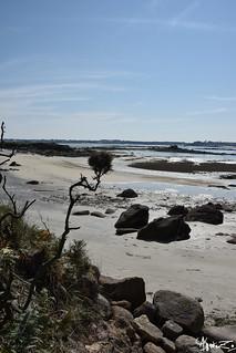 plage de l'ile callot   by azillia